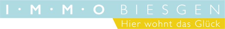 ib logo final 768x101