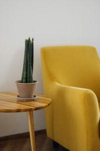 Weiße Wand, Retro-Tisch mit Grünpflanze und gelber Sessel