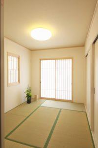 Heller Raum mit Teppich, Pflanze und Deko